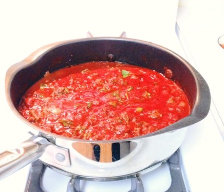 paleo-lasagna-sauce